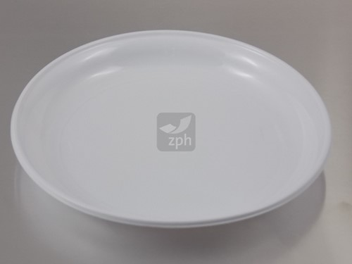 BORD PLASTIC PS WIT  Ø 22 cm 1 vaks
