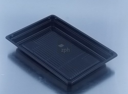 SUSHI TRAY BODEM 212x143x22 mm ZWART THERMOFORM apet Large